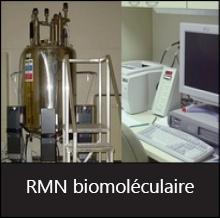 RMN biomol